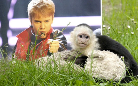 Mally is still a Belieber. (Future Image/startraksphoto.com)