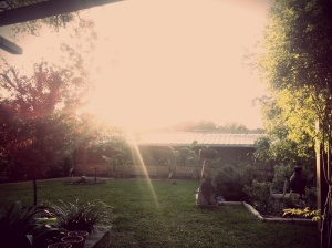 Garden Hideaway in Austin