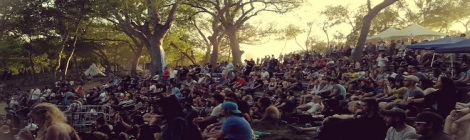 The crowd at Austin Psych Fest (Ancient River)