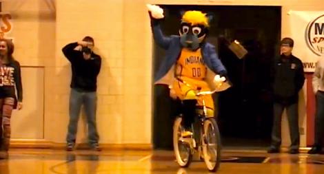 Boomer the mascot