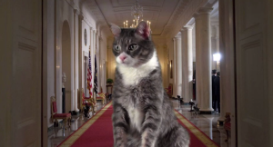 We will be more than happy to welcome our cat overlords. (Screen shot from http://youtu.be/8WqZvKMK1pM)